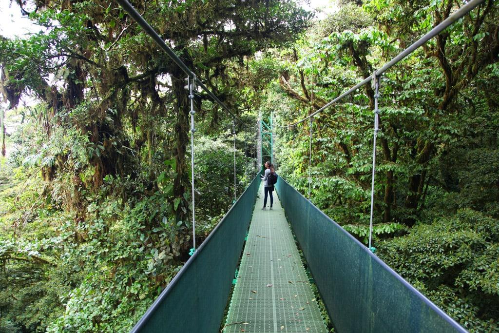 Hanging Bridges Sky Walk tour in Monteverde