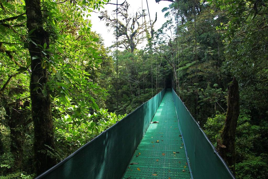 Hanging bridges Skywalk in Monteverde
