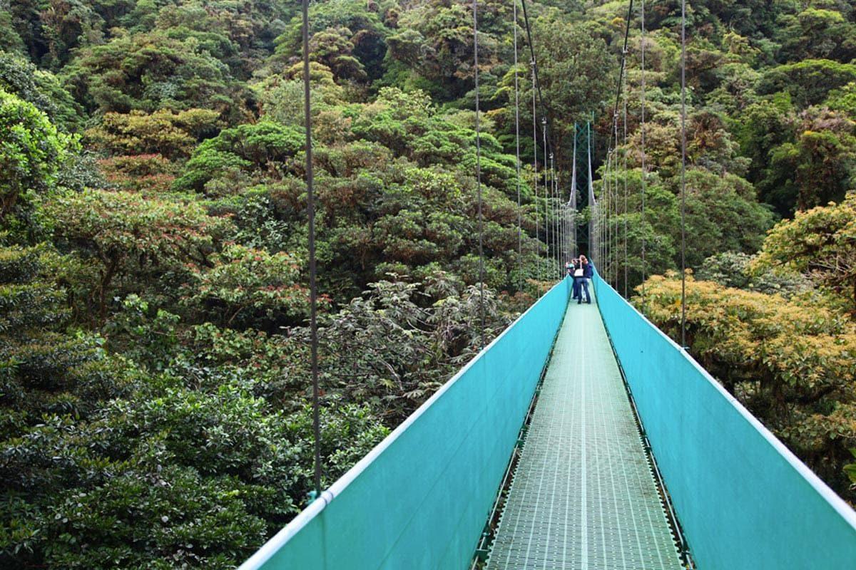 Bezienswaardigheden Costa Rica - Monteverde
