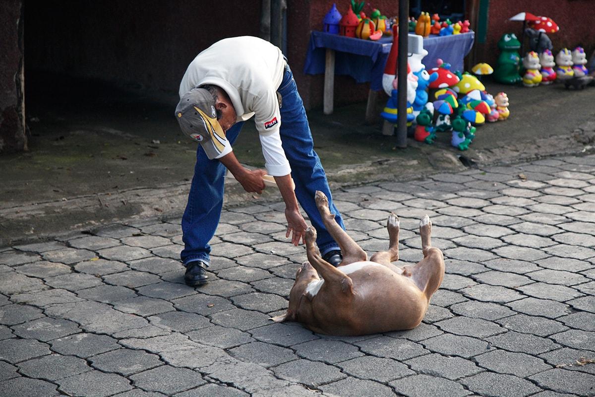 Man speelt met zwerfhond in Catarina, Nicaragua