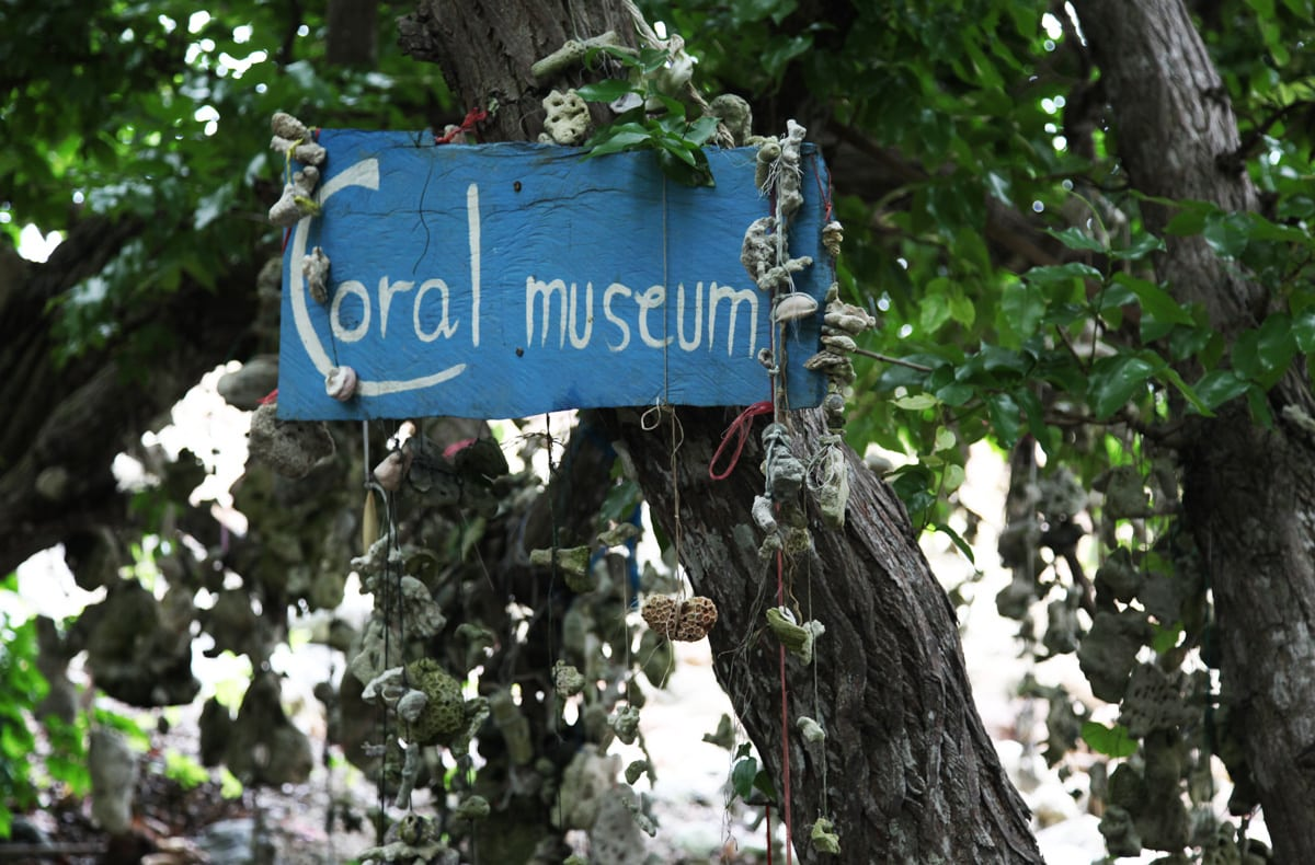 Het koraal museum van Koh Talu in Thailand