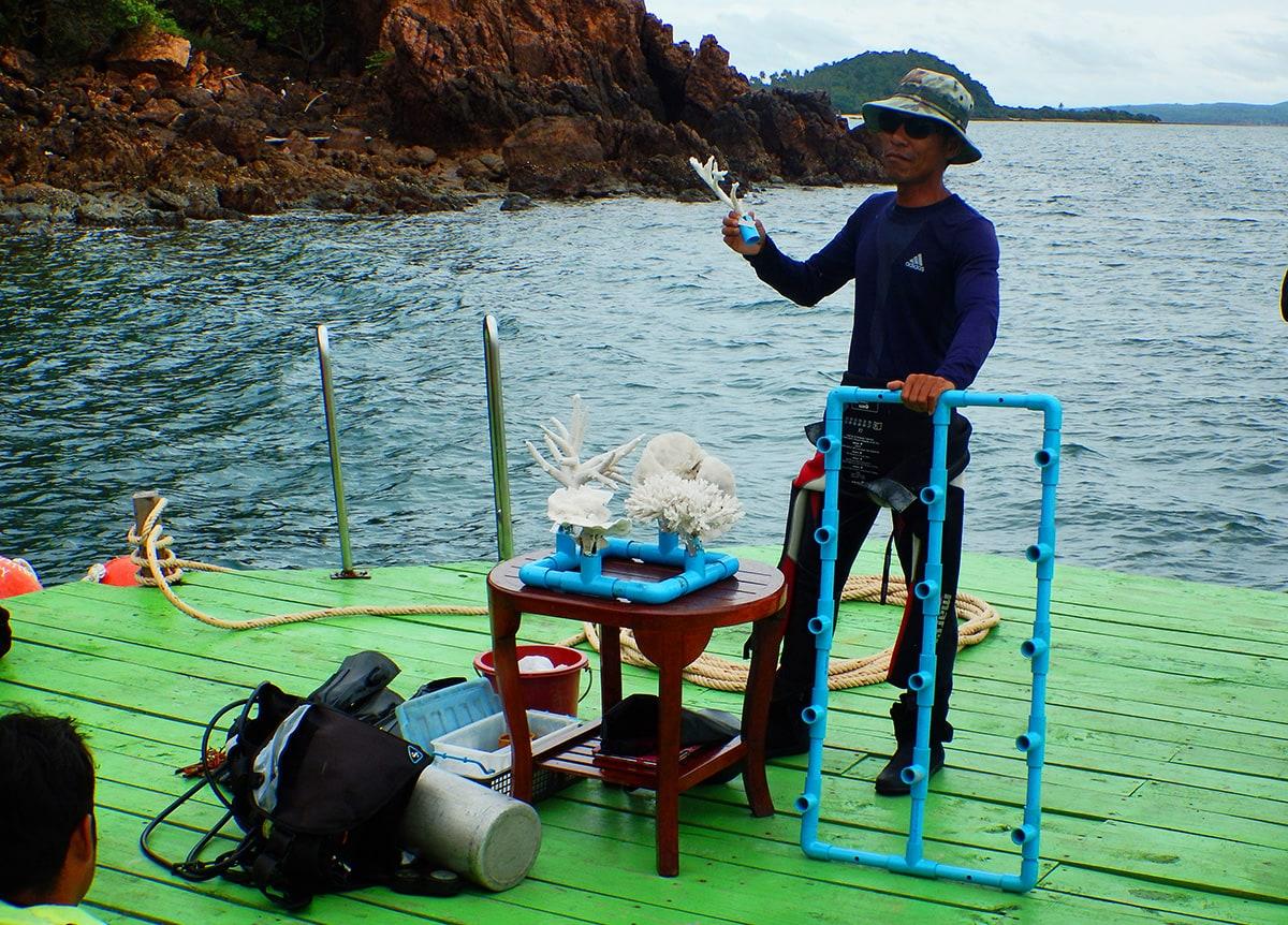 Uitleg over het koraal bij het eiland Koh Talu in Thailand