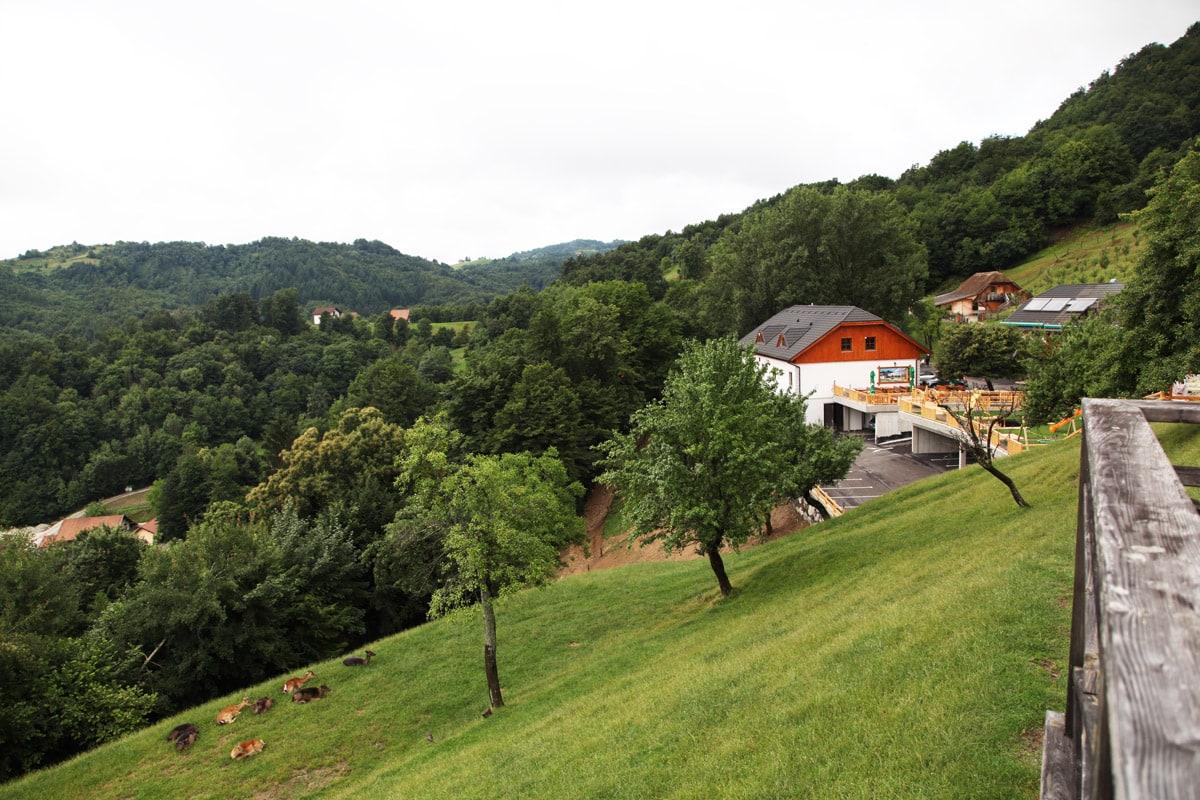 Jelenov Greben in Olimje, Slovenië