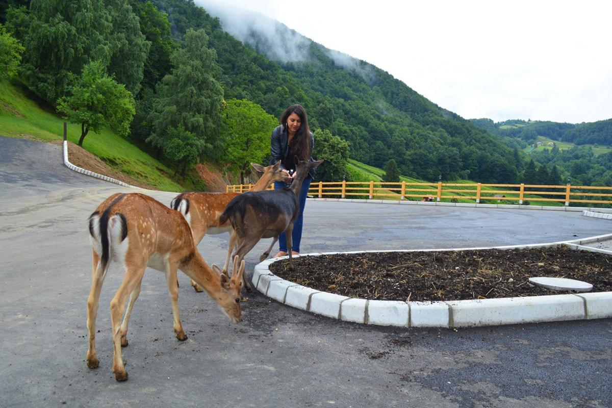 wat te doen in Slovenië