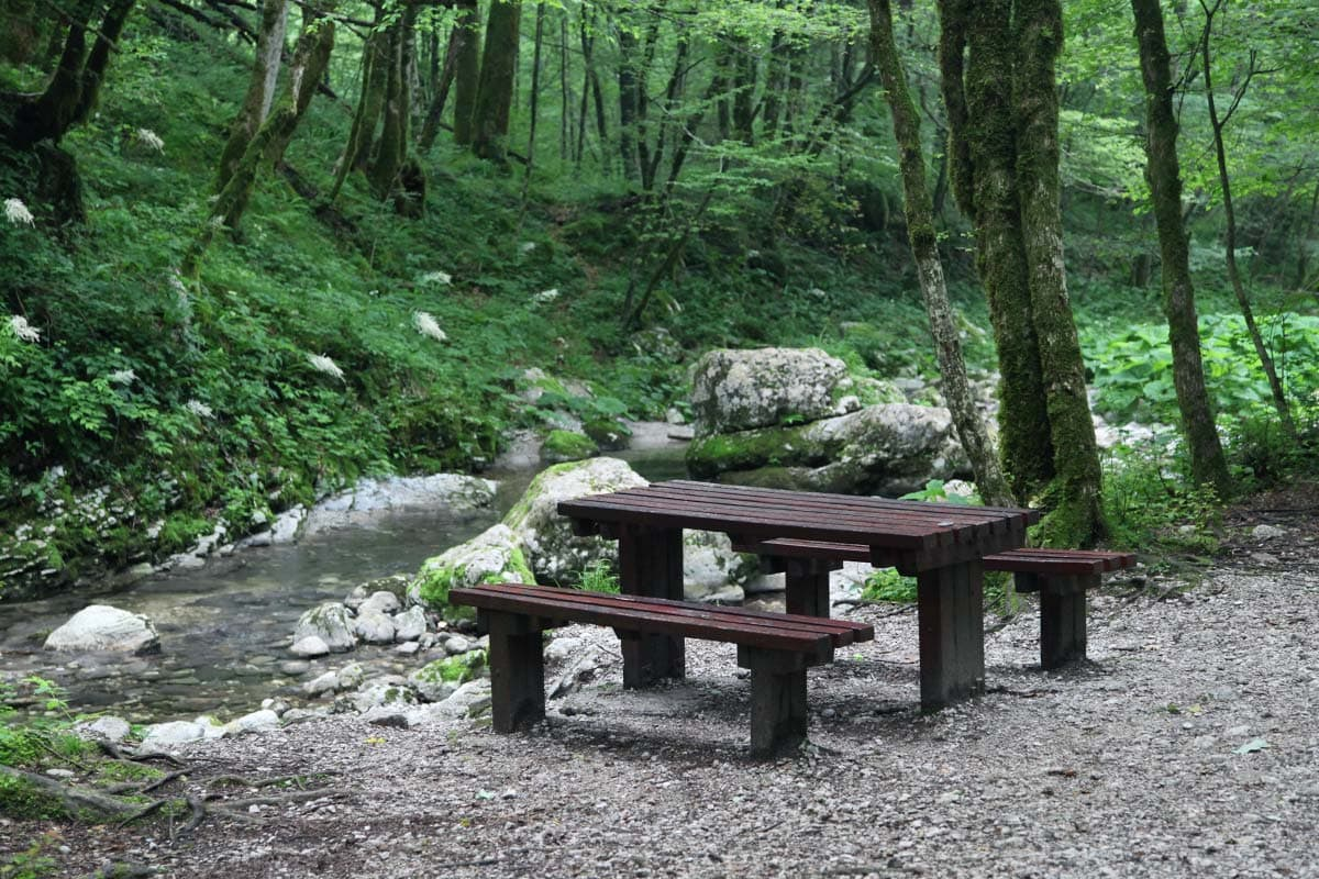 kozjak-slovenie-park