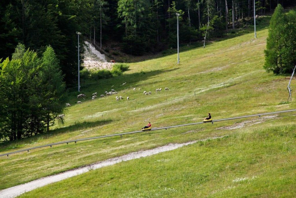Rodelbaan in Kranjska Gora Slovenie