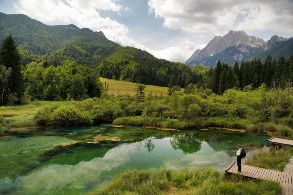 Zelenci meer Triglav National Park