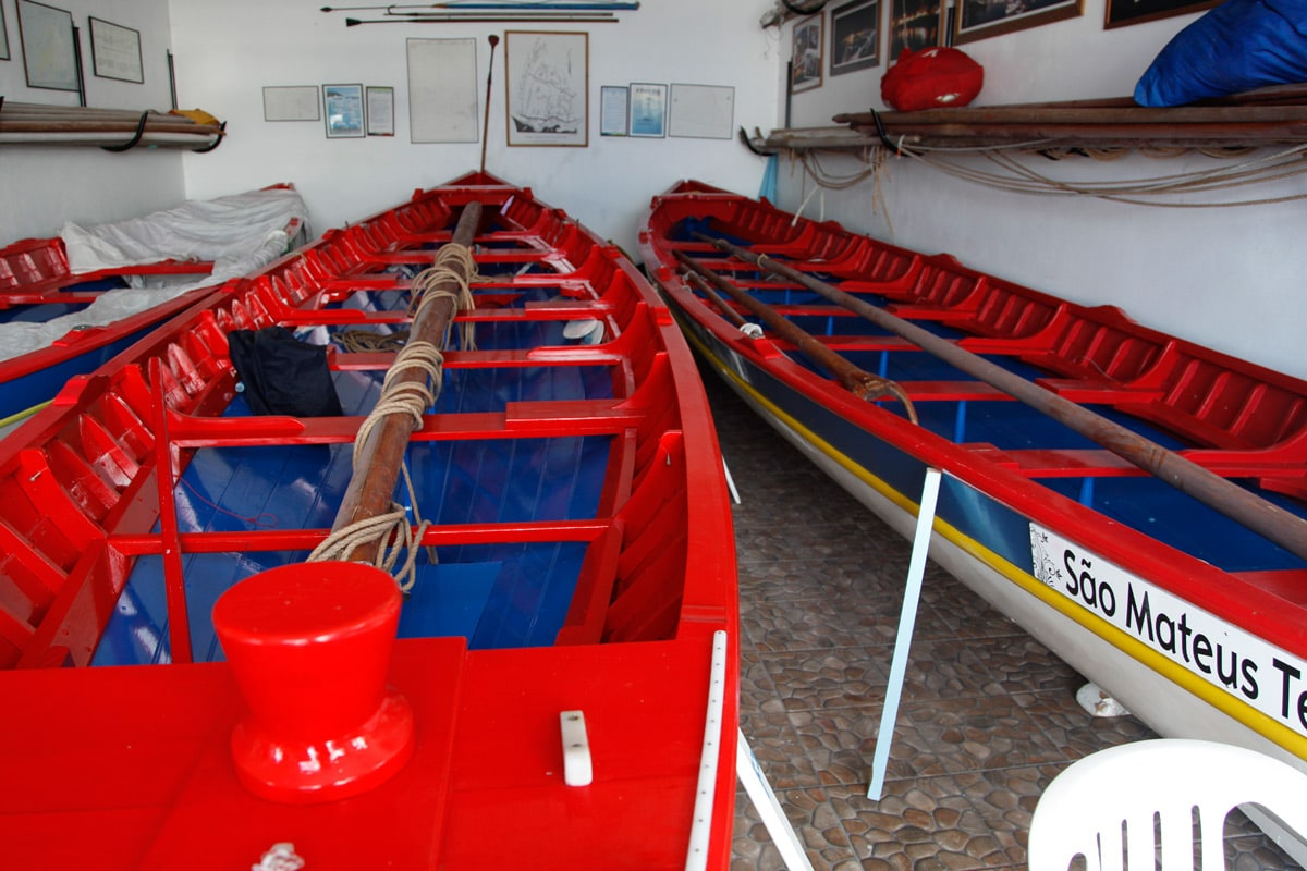 walvissen excursie terceira