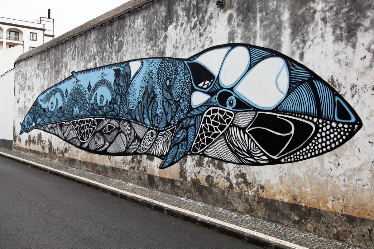 walk-and-talk-whale