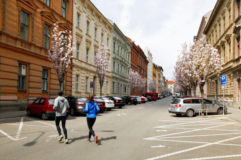 Wat te doen in Brno Tsjechie
