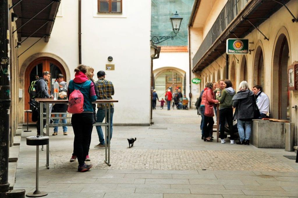 Studenten van de universiteit in Brno