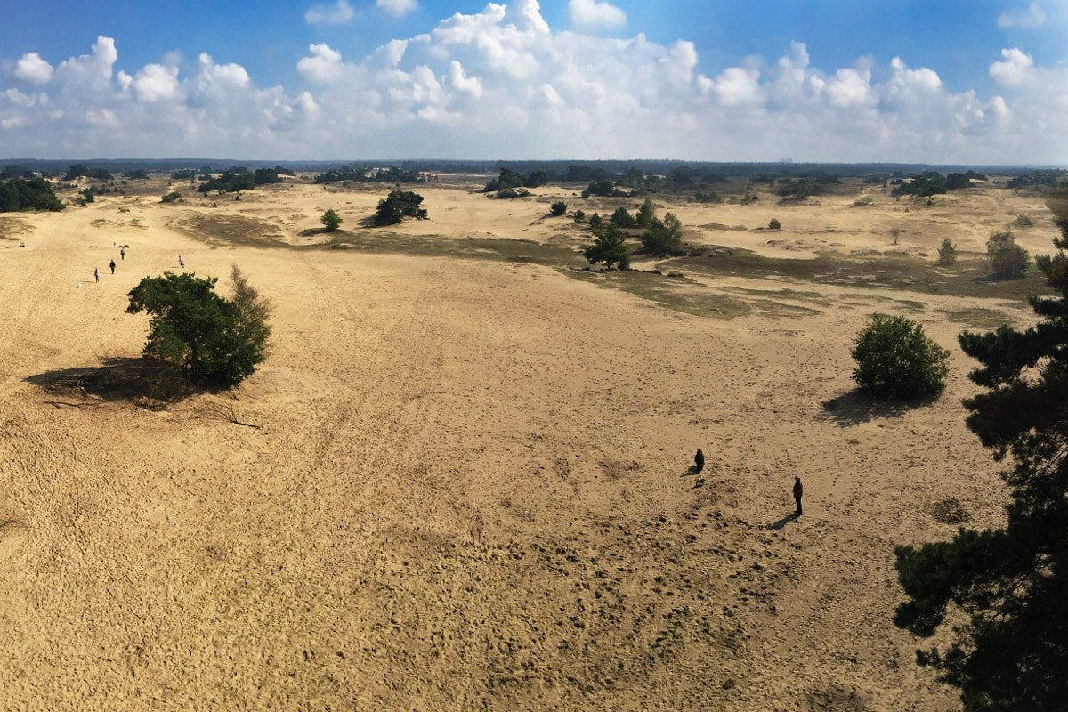 uitzicht vanaf de uitkijktoren kootwijkerzand