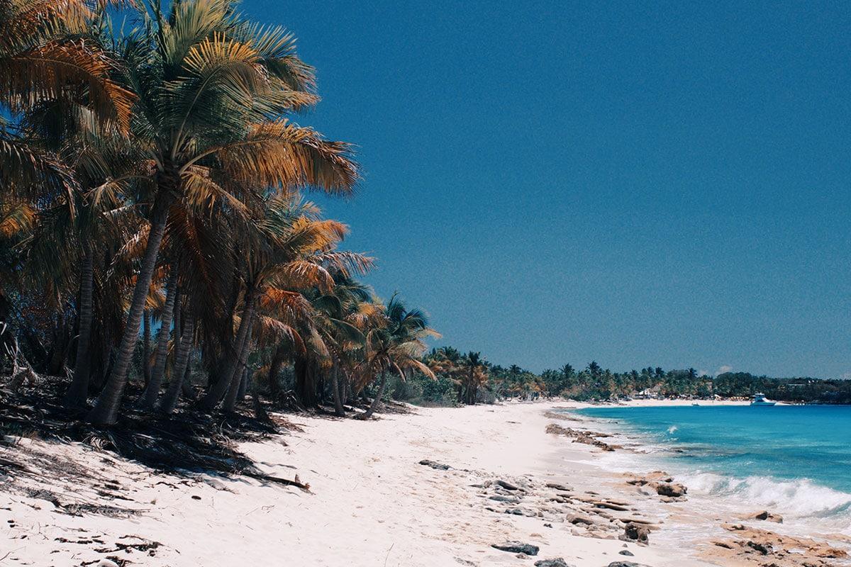 dominicaanse republiek wie is de mol