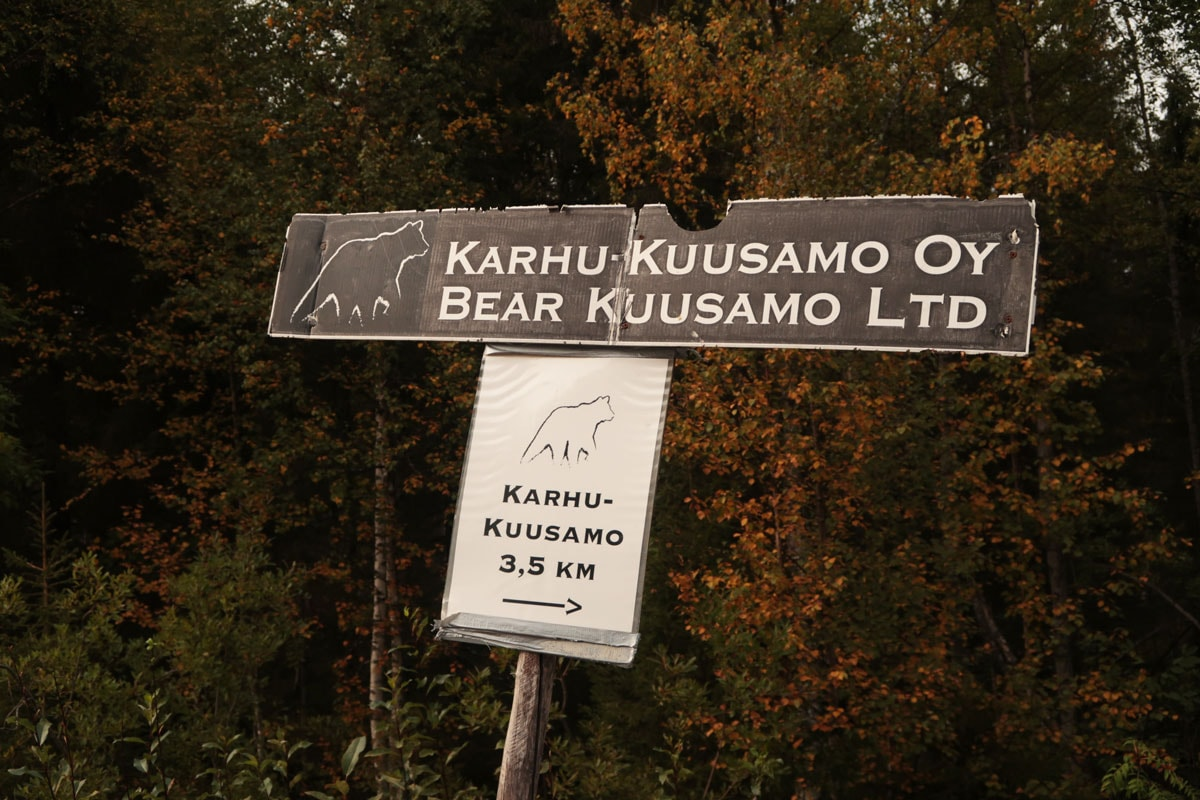 Bear watching tour in Kuusamo in Finland