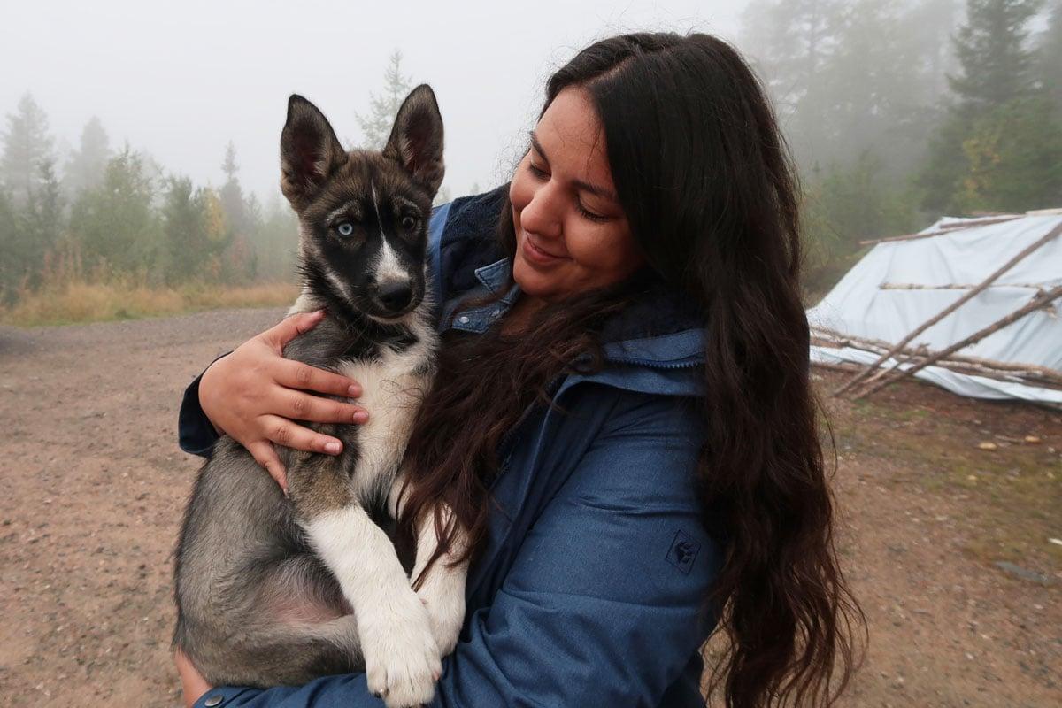 Huskies bezoeken op de husky farm in Fins-Lapland