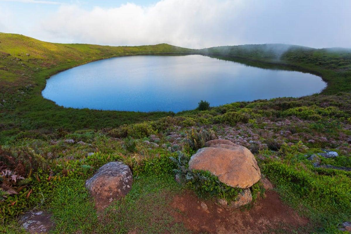 Galapagos eilanden natuur