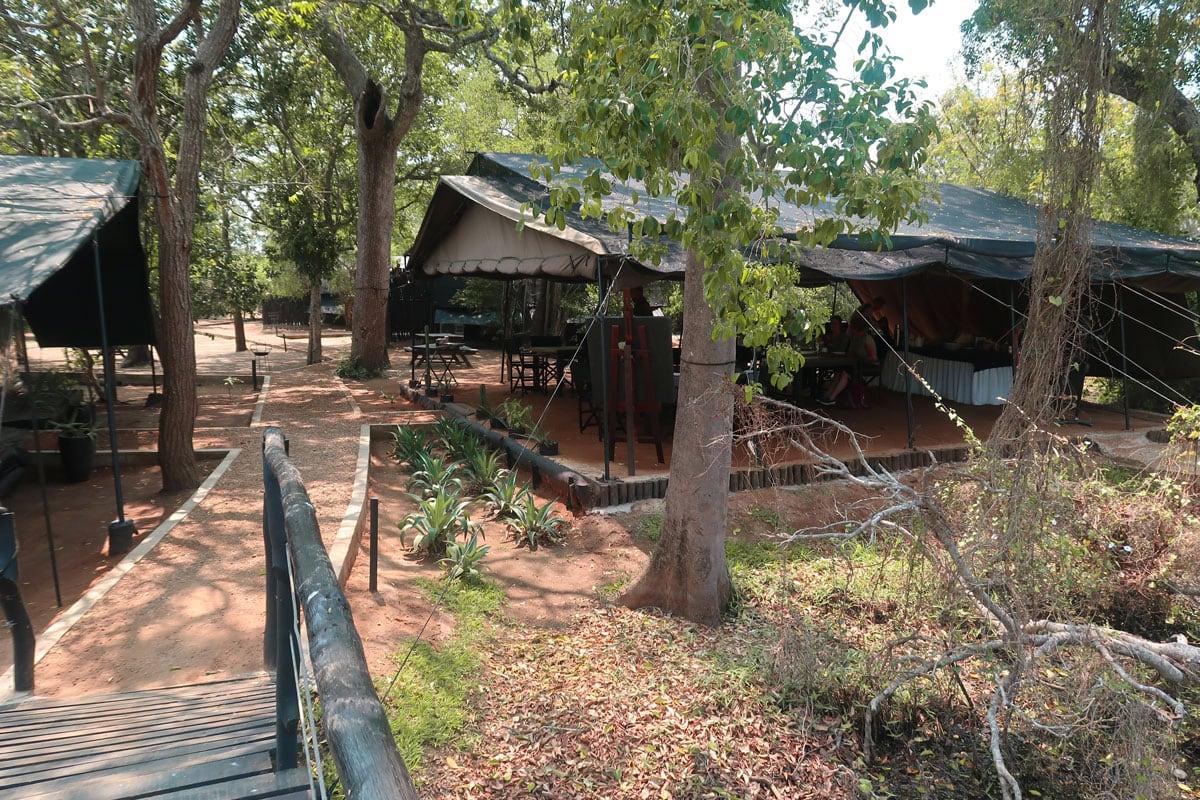Safarikamp in Yala
