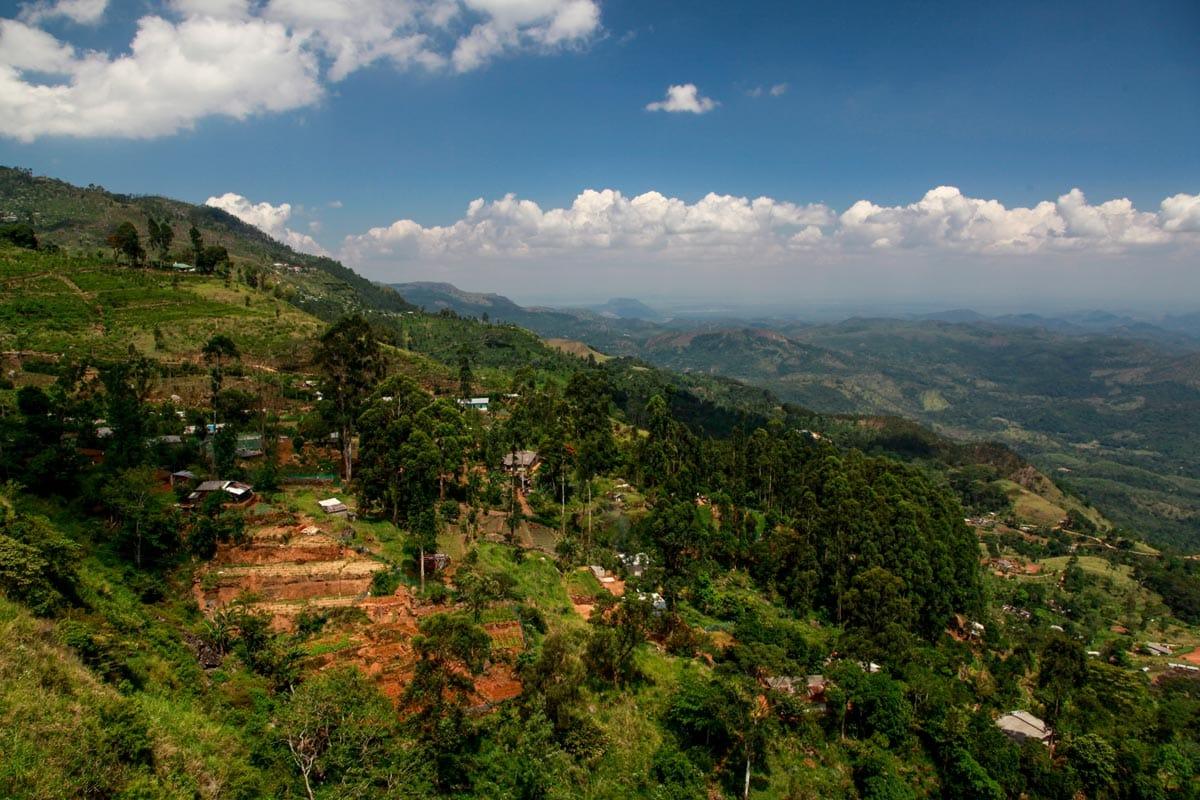 Individuele vakantie Sri Lanka