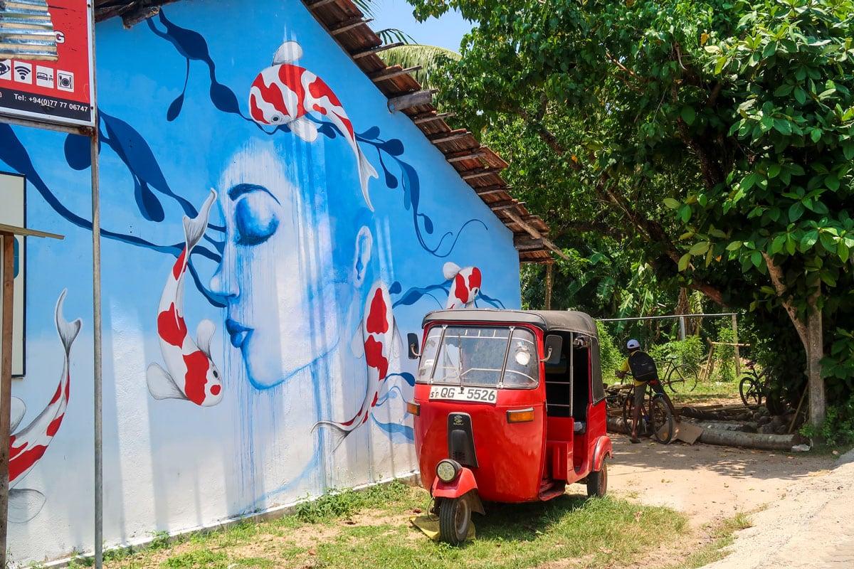 Vakantie Sri Lanka Tips