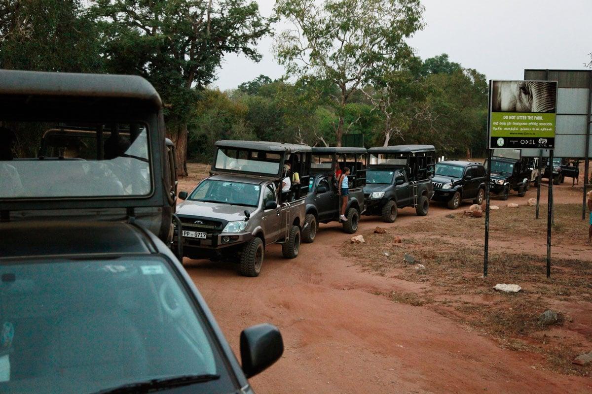 Beste tijd Yala National Park