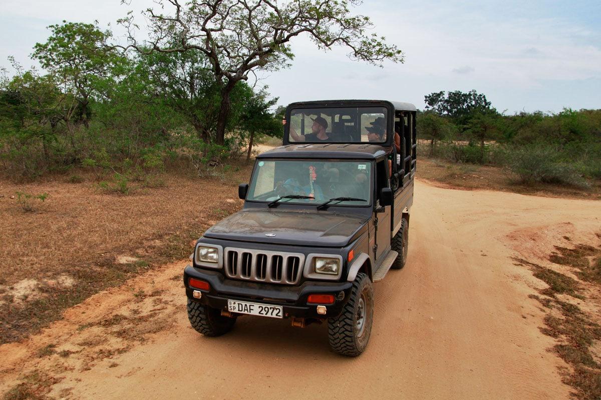 Wildlife jeep safari Sri Lanka