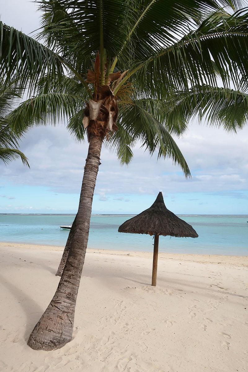 tropische stranden