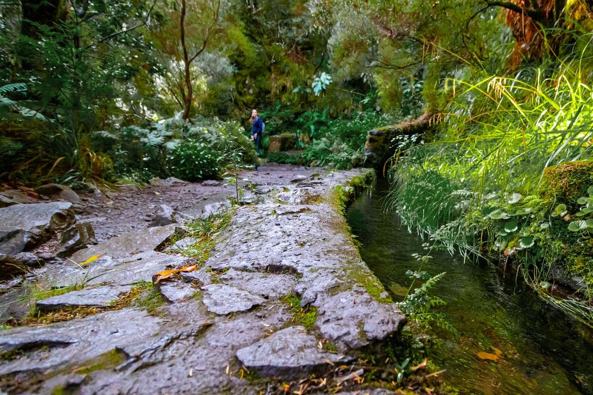 Levada wandeling Madeira