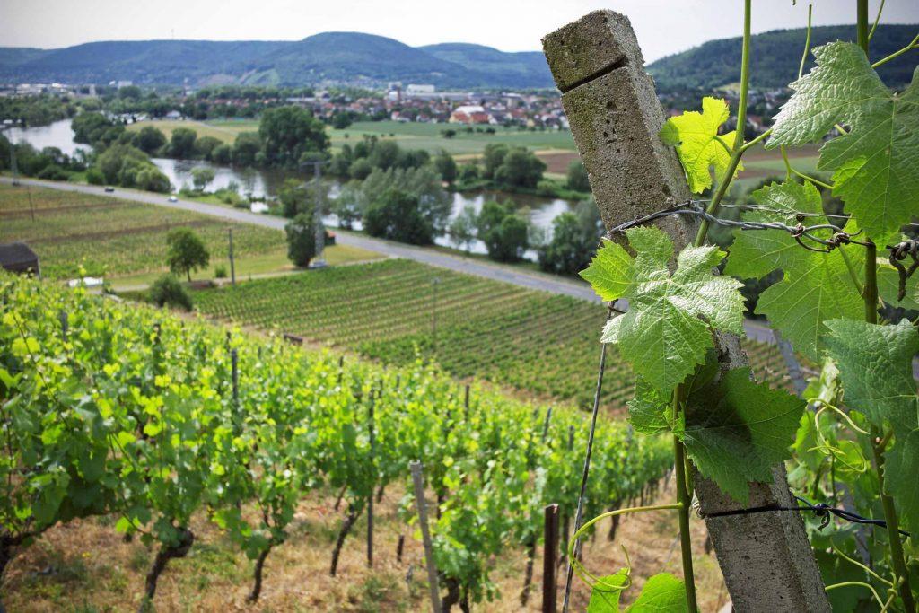 Duitse wijnstreken Franken