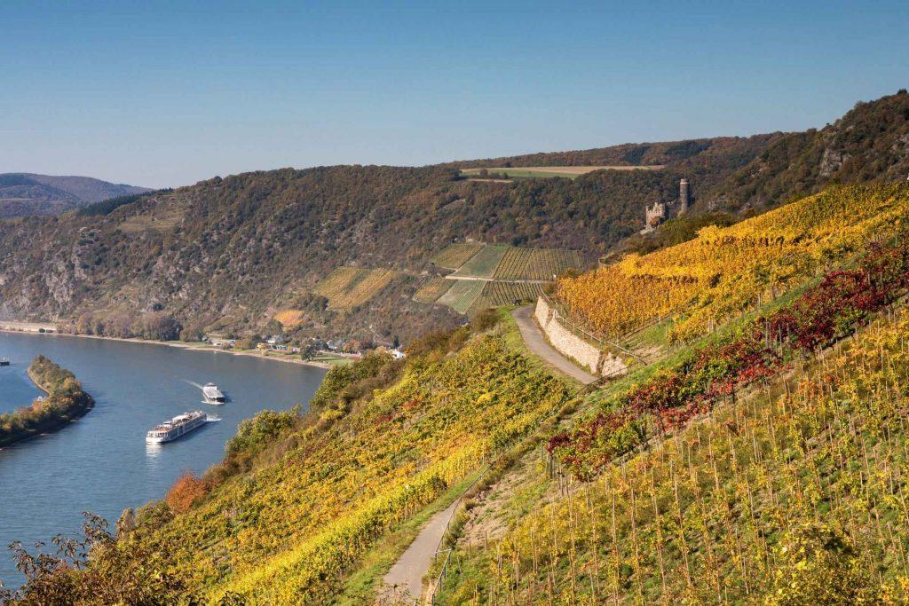 Duitse wijnstreken Mittelrhein