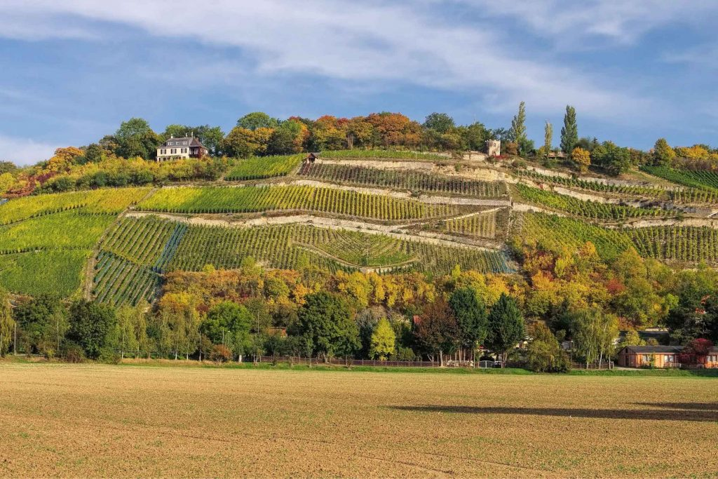 Steile wijnterrassen in Duitsland wijngebieden