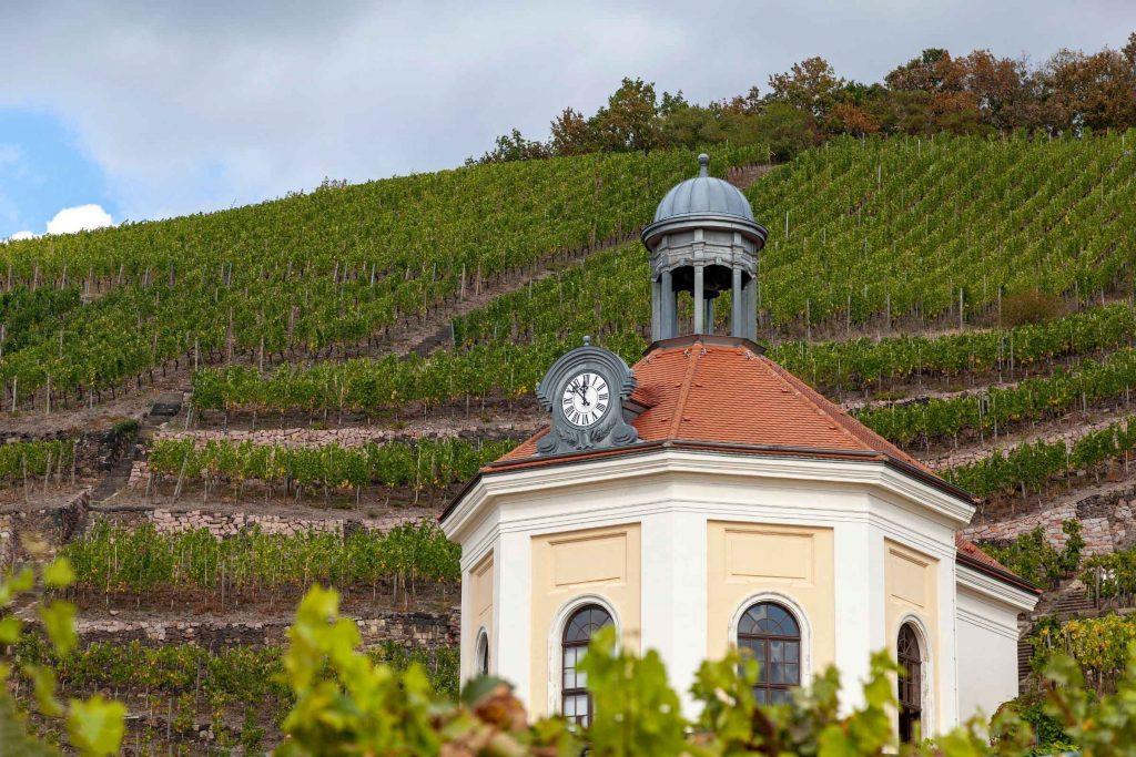 Duitse wijnstreken Saksen