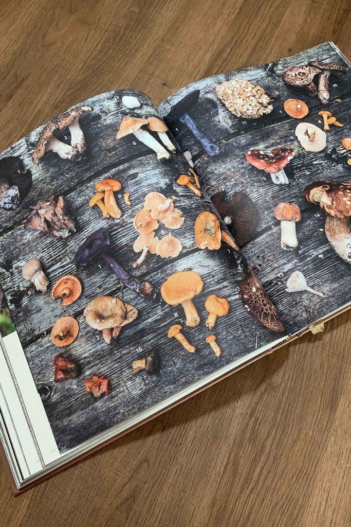 Kookboek Cook the Mountain kookboek van Norbert Niederkofler
